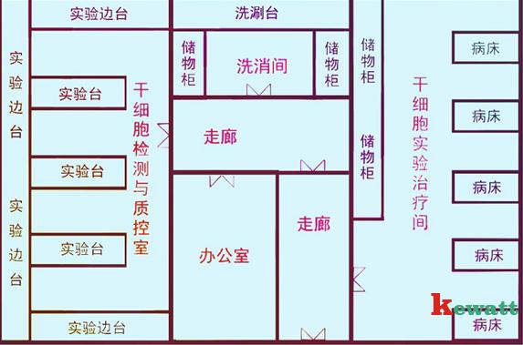 食用菌实验室平面图_细胞培育室_中山科瓦特